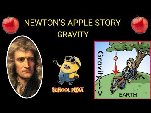 NEWTON'S GRAVITY | APPLE STORY IN TAMIL | SCHOOL PEDIA |