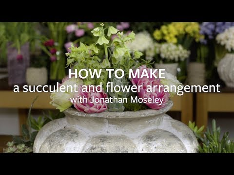 How To Make A Succulent And Flower Arrangement Youtube