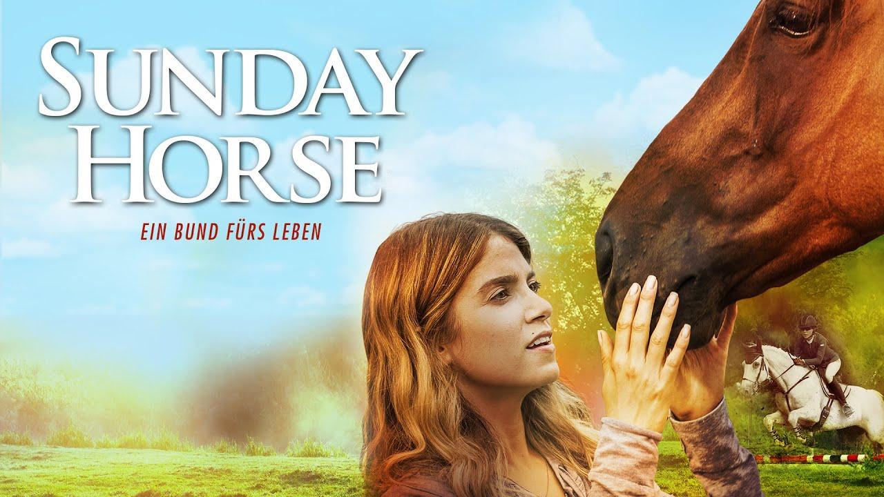 Ein pferd fürs leben download