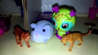Episode 2 of animal territory