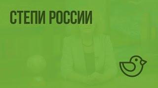 Степи России. Видеоурок по окружающему миру 4  класс