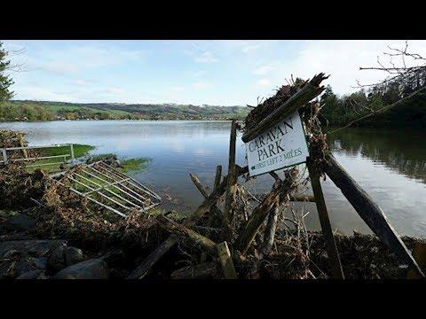 Ураган вынес на побережье Шотландии скелет загадочного существа