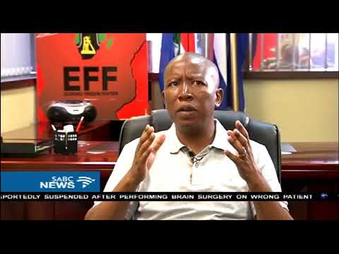 Malema says land reform in SA won't face challenges like Zimbabwe