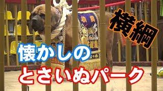 高知県桂浜にあった とさいぬパークです 〜〜〜〜〜〜〜〜〜〜〜〜〜〜...