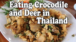 Eating Thai Food: Crocodile and Deer in Thailand. Thai Style Jungle Food.