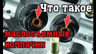Замена маслосъемных колпачков РАЗВОД на ДЕНЬГИ.