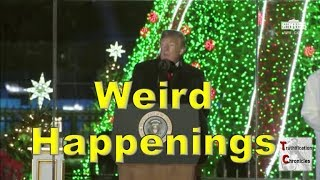 Weird Happenings at the National Christmas Tree Lighting