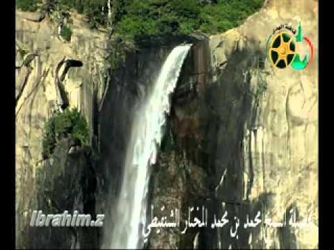 حكم الأخذ من اللحية دون القبضة الشيخ محمد بن محمد المختار الشنقيطي