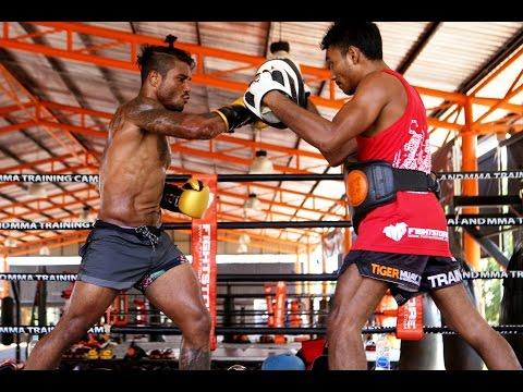 Pro Fighter Pad Work: Bruno Miranda