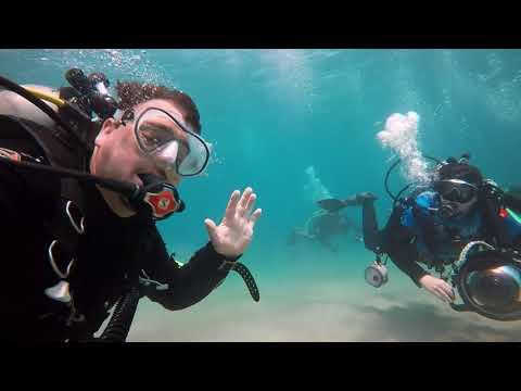 Diving in Timor Leste - September 2017 Trailer