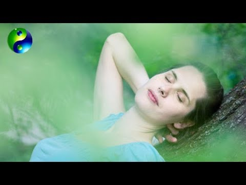 Relaxing Music: Reiki Music; Yoga Music; New Age Music; Relaxation Music; Spa Music; 🌅 661