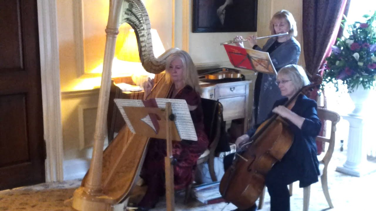Harp Cello And Flute Pachelbels Canon In D