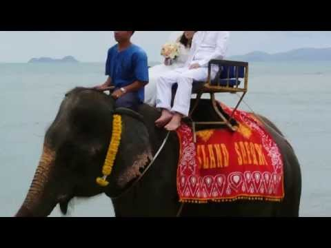 タイ サムイ島で結婚式 象