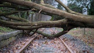 """Unwetter """"Friederike"""": Mit Mühe auf den Füßen bleiben"""