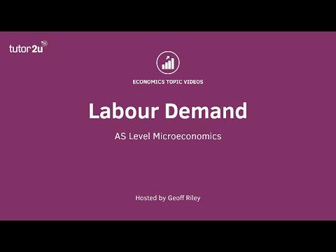 Labour Demand