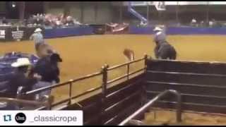 Popular Videos - Team roping & Sport venue