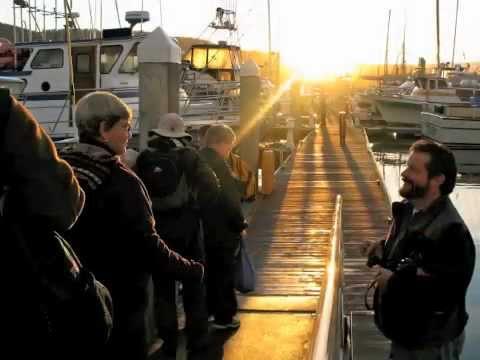 ABA 2011: Pelagic Birding