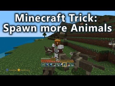 Minecraft Trick: Spawn More Animals.