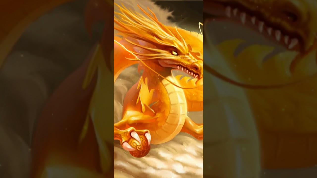 Chinese dragon wallpaper live   Fantasy