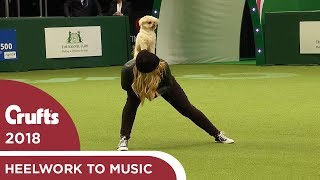Freestyle Heelwork to Music Competition - Part 2   Crufts 2018