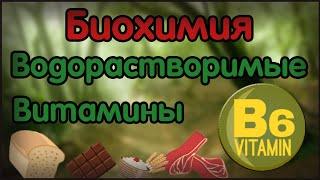 Биохимия. Лекция 17. Водорастворимые витамины. Витамин B6. Пиридоксин.