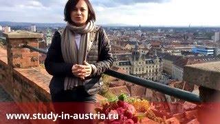 🇦🇹 Высшее образование, обучение и детский отдых в Австрии с ARGE Study Expertas Austria!