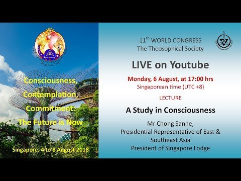 2018WC – D3 Lecture 'A Study in Consciousness' - Chong Sanne