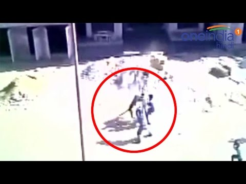 Leopard attack near Army Hospital in Meerut, Watch Video