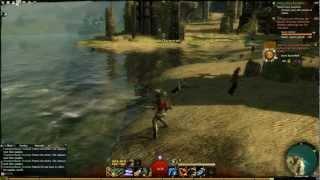 Guildwars 2 Beta in HD