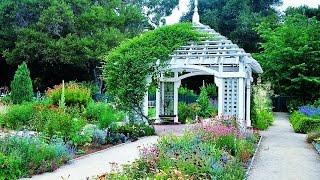 Мой прекрасный сад. Элементы сада.The most beautiful elements of the garden.