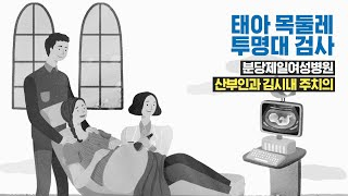 NT_scan 태아 목둘레 투명대 검사