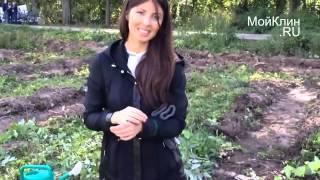 видео Звенигородский Центр Садоводства ООО
