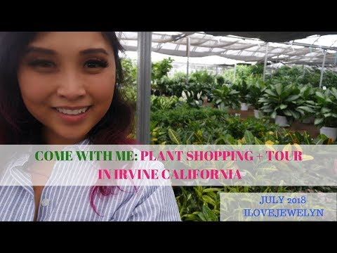 Come With Me: Plant Shopping + Nursery Tour In Irvine, CA | July 2018 | ILOVEJEWELYN