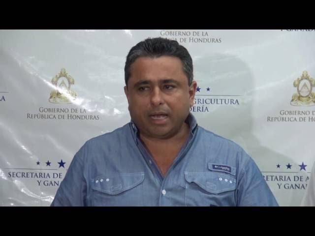 Apoyo técnico de Israel fortalecerá ganadería hondureña