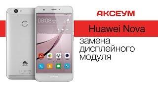 Замена экрана на 📱 Huawei Nova - пошаговый разбор \ Replacement LCD Huawei Nova