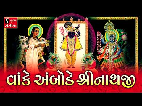 Vaanke Ambode Shrinathji.. Ne Sundar Shyam Swaroop - SHREENATHJI SATSANG
