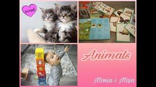 Nazwy zwierząt po angielsku # Zabawa z angielskim # Monia&Maja