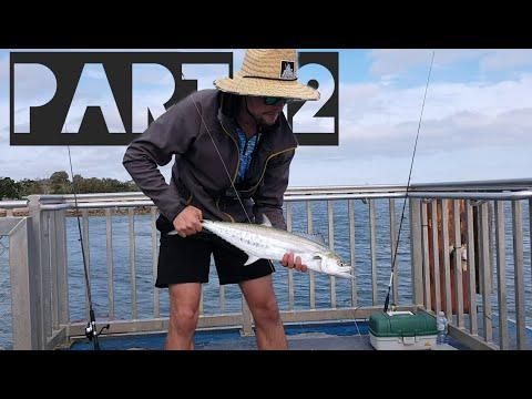 Landbased Mackerel SEQ Part 2 - Australian Fishing