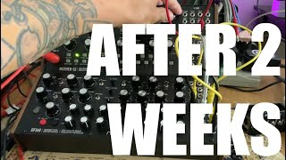 After 2 Weeks with the MOOG DFAM and MOTHER 32