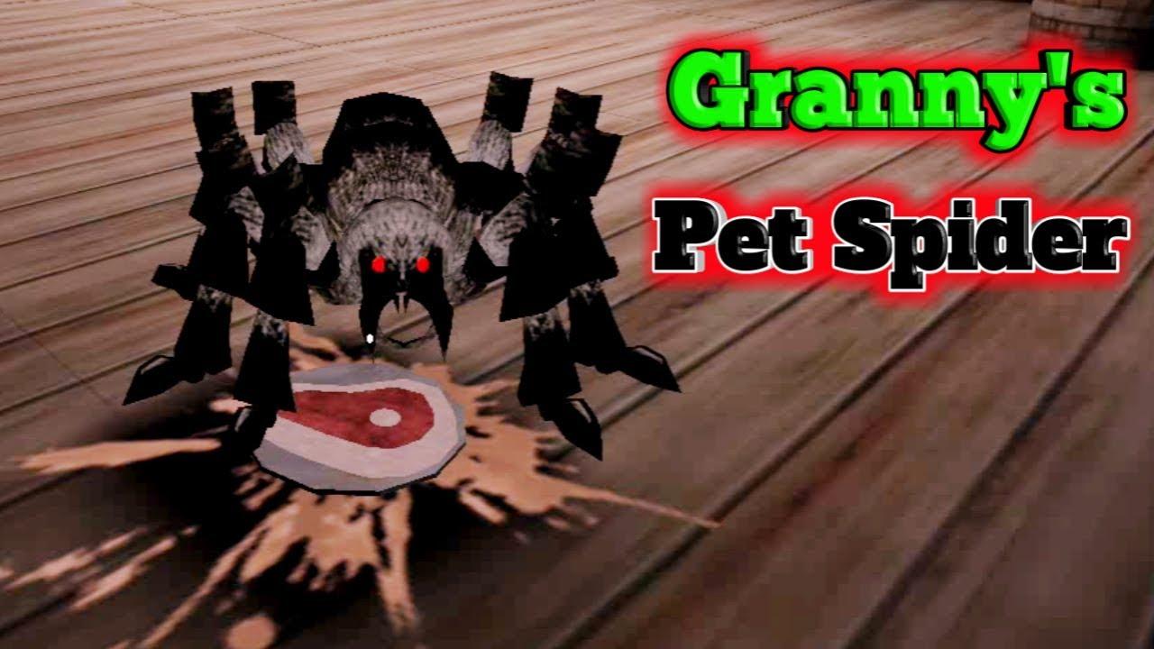 Roblox Granny Pet Spider Youtube Granny S Precious Pet Spider Youtube