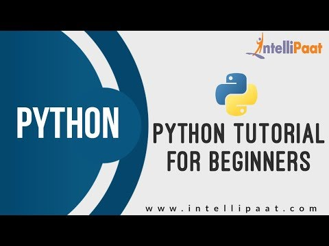 Python Tutorial for Beginners | Python Tutorial | Online Python Training | I Intellipaat