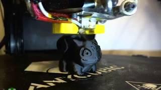 Печатаем на 3D принтере Бульбазавра (Timelapse в OctoPrint)