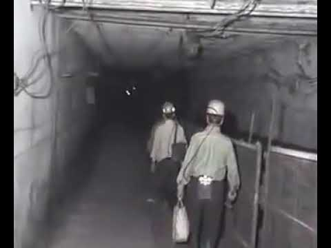 Underground  Coal Mine Working