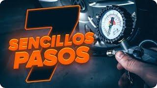 Cambiar Taco de motor NISSAN KUBISTAR - consejos sobre mantenimiento Motor