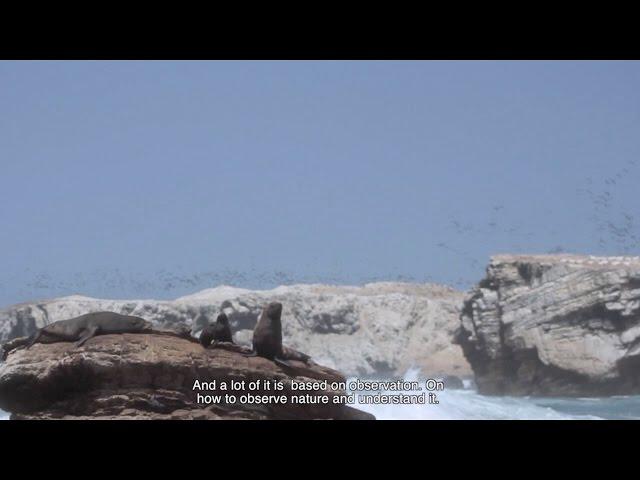 Inspiración para Conservar  - Programa Punta San Juan
