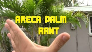 EatYourBackyard  - The Wonderful ARECA PALM - Tropical Storm Alberto Rant
