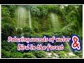 Suara Air Mengalir Dan Burung Relaksasi Untuk Burung Macet Bunyii  Mp3 - Mp4 Download