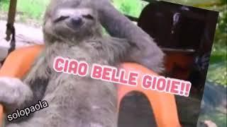 Download Un Cuore A Spasso Video Clipsoon Net