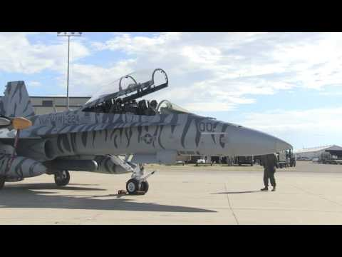 Jaded Thunder: VMFA(AW)-224