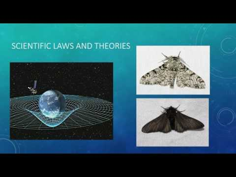 Physical Science: Chapter 1 The Nature of Science